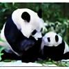 pandafan89's avatar