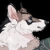 Pandalifer's avatar