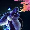 PandaMorphic's avatar