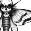 Pandoratum's avatar