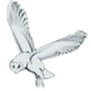 panmann's avatar