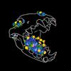 Panteraregaladora's avatar