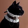 PantheraDraws's avatar