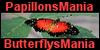 PapillonsMania