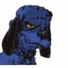 paranthropus's avatar