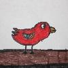 paraparakeet22's avatar