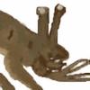 Parazit2016's avatar
