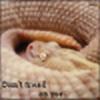 paris600's avatar