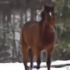 Part-Time-Cowboy's avatar
