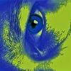 Paul-1485's avatar