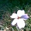 pausunshine's avatar