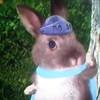 PawPatrolSucks's avatar