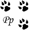 Pawpr1nt's avatar