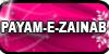 Payam-e-Zainab's avatar