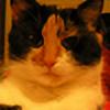 pazdera's avatar