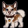 peachanO3O's avatar
