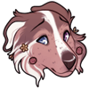 peachcollie's avatar