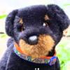 peachyplush's avatar