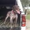 peanutbutterhunter's avatar