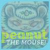 peanutthemouse's avatar