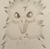 PencilParrot's avatar