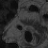 Pendum's avatar