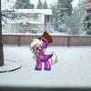 perceuspie's avatar