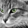 PercyJackson7's avatar