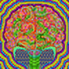 Peridexion's avatar