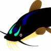 Pesegato's avatar