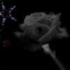 PetalOfTheBlackRose's avatar