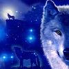 peterkia000's avatar