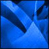 PetRockX's avatar