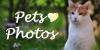 Pets-photos