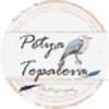 pettenoir's avatar