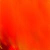 ph0enix392's avatar