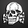 phantomp61's avatar