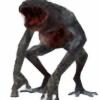Phavore's avatar