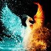 pheonixart543's avatar
