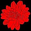 PhiannaRose's avatar