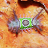 Phlem-Snotbag's avatar