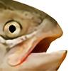Phlocebo's avatar