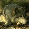 Phloris's avatar