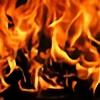 phoenixgodflame's avatar