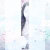 PhongPhari's avatar