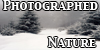 PhotographedNature