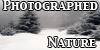 PhotographedNature