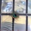 photolover1312's avatar
