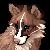 Phyllodough's avatar