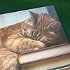 pinkiepie38592's avatar